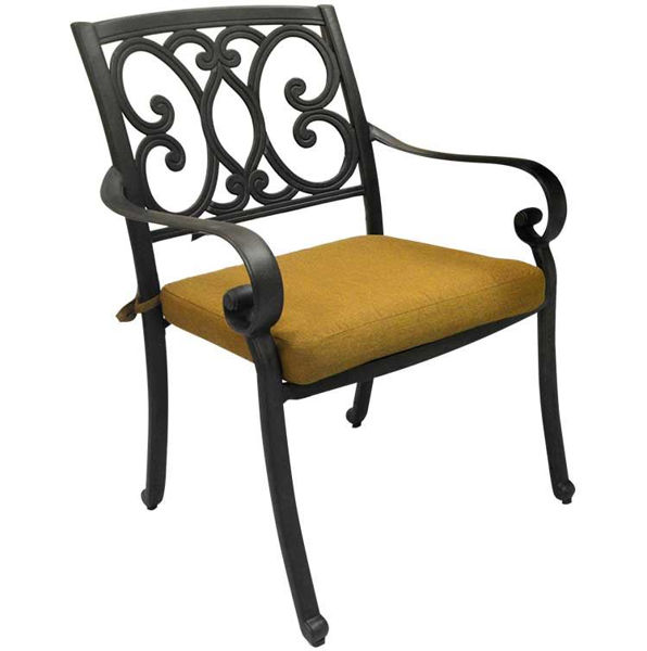 Picture of Paragon Casual Buena Vista Cast Aluminum Dining Arm