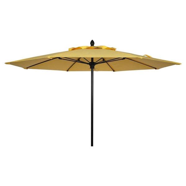 Picture of FiberBuilt 9 Ft Riva Umbrellas Push Up Lift - Black Finish